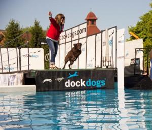 Doglaunchesduringdockdogscompetition